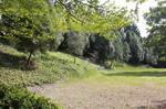 校園景色3