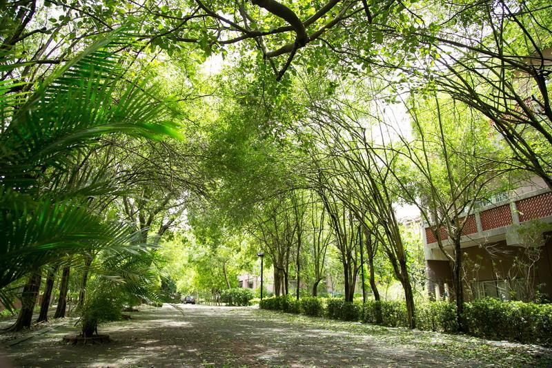 校園景色7